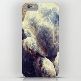 tortoise love iPhone Case