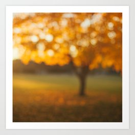 Oak Knoll Gold Art Print