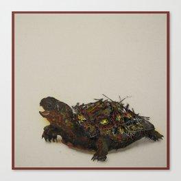 Raphael Canvas Print