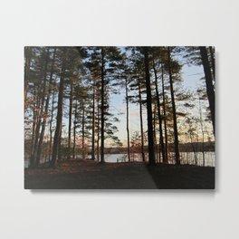 Morses Pond Metal Print