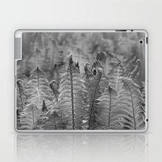 Dunvegan Ferns Laptop & iPad Skin