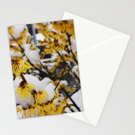 Snowy Bloom Stationery Cards
