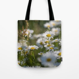 Daisies meadow in the summer Tote Bag