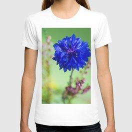 Beauty of blue cornflower T-shirt