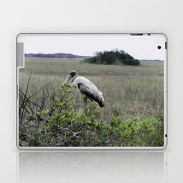 Wood Stork in the Glades Laptop & iPad Skin