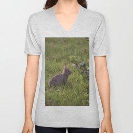 Spring Rabbit Unisex V-Neck
