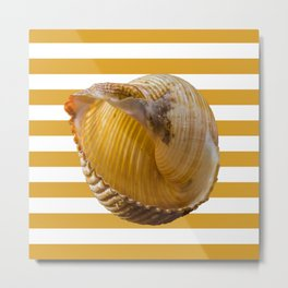 A Sea Shell with Nautical Stripes in Butterscotch and White Metal Print