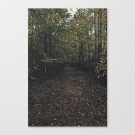 Forest 002 Canvas Print