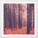 Vintage Pines by joystclaire