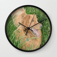 conan Wall Clocks featuring Golden Retriever Conan by Yvonne Carter