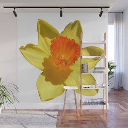 Daffodil Emblem Isolated On White Wall Mural