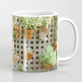 Wall of Succulent Plants Coffee Mug