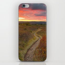 Dolly Sods Twilight Trail iPhone Skin