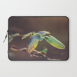 Holding On: A Winter Leaf Laptop Sleeve