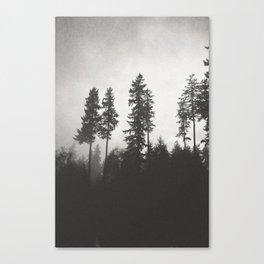 Evening Calls Canvas Print