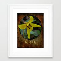 trout Framed Art Prints featuring Trout Lily by PamelasDreams