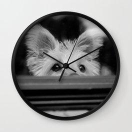 Charlie at the window Wall Clock