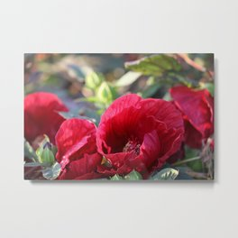 Kingdom Of Red Metal Print