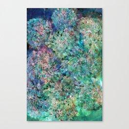 Banksia Cool Blue Canvas Print