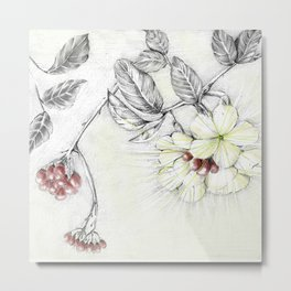 Pequi Flower Metal Print