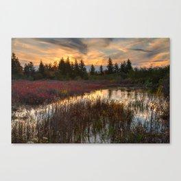 Autumn Dolly Sods Sunset Canvas Print