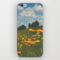 Dreaming in a Summer Field iPhone & iPod Skin