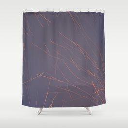 #26 Shower Curtain