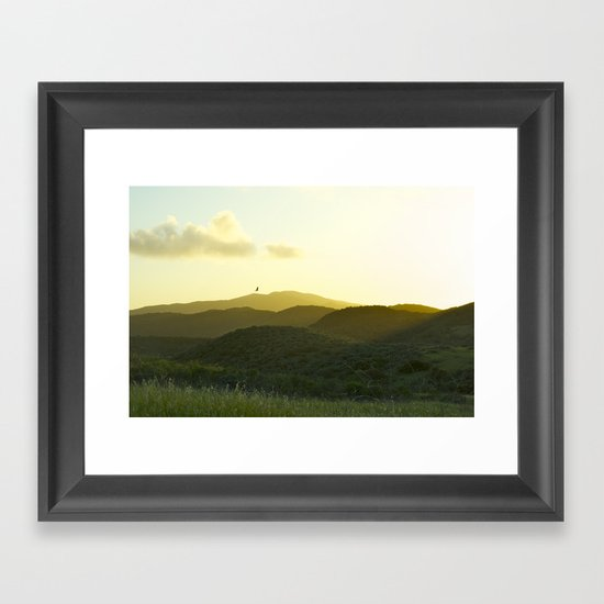 California Soaring Framed Art Print