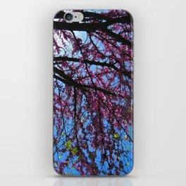 Blossom (1) iPhone Skin