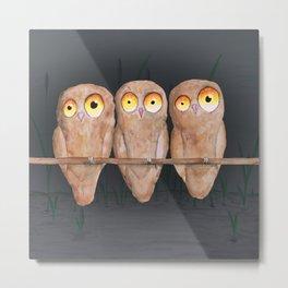 Three owls Metal Print