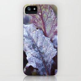 Frozen Beetroot iPhone Case