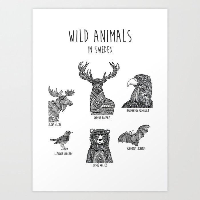 Wild animals in Sweden 2 Art Print