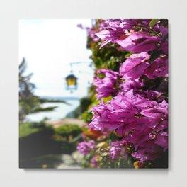 Eze Village Flowers Metal Print