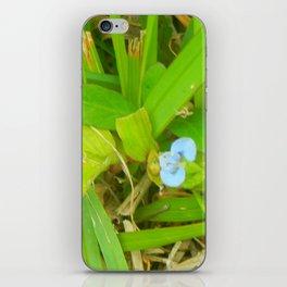 Baby Blue iPhone Skin