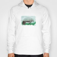 manatee Hoodies featuring The Manatee ~ Watercolor by Amber Marine by Amber Marine