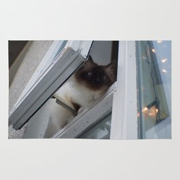 Icelandic Siamese Cat Rug