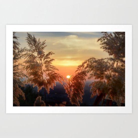 """Sun through the fields"" Sunset at the mountains Art Print"