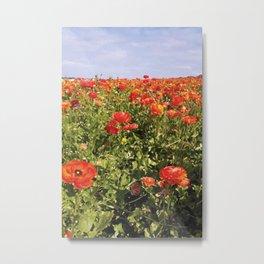 Flower Fields Metal Print