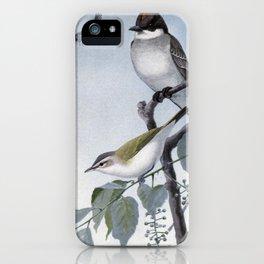 Scrapper the Kingbird, Redeye the Vireo1 iPhone Case