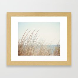 Beach Grass Photography, Calming Coastal Photo Print, Relaxing Beach House Photograph, Seaside Photo Framed Art Print