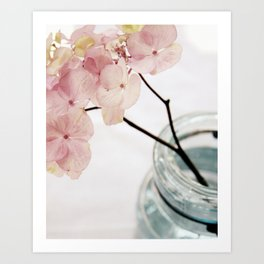 Minimalist Pink Hydrangea Art Print
