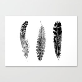 Feather Trio | Black and White Canvas Print