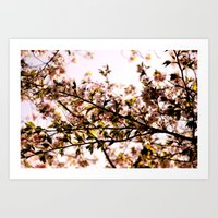 Spring is coming Art Print