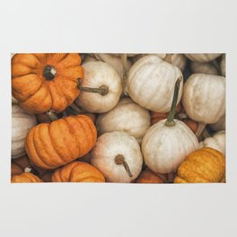 Pumpkins on sale at one of the street seasonal markets in Sweden Rug
