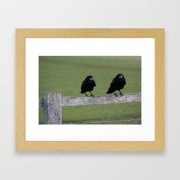Just Two Birds  Framed Art Print