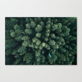Forest from above - Landscape Photography Canvas Print
