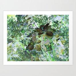 Spring 5 Art Print