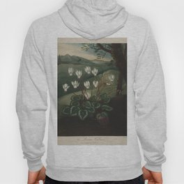 Pether, Abraham (1756-1812) - The Temple of Flora 1807 - Persian Cyclamen Hoody
