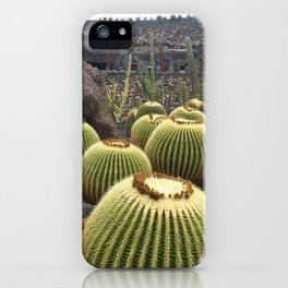 Cactus and Hugs iPhone Case