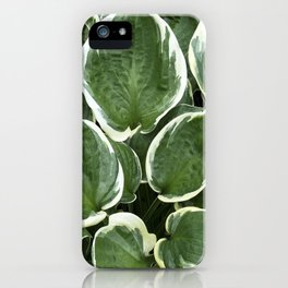 Cascade of Leaves iPhone Case